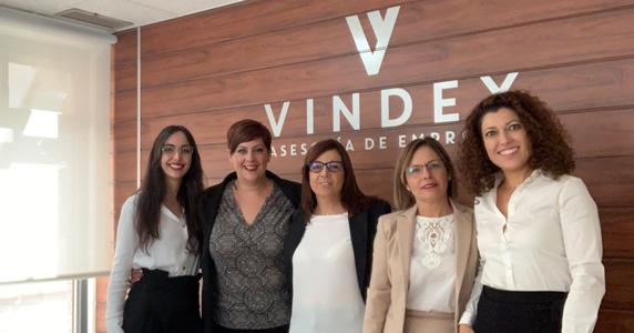 Vindex · Asesoría de empresas